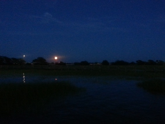"""I am always calmed and  inspired by a full moon! Sometimes I slip out of the house with my camera  to the old pitt st bridge nearby to capture the rising moon. Either there or the new boardwalk on shem creek are my quick ""go-tos"" if there is an irresistible sunset or moonrise happening."""